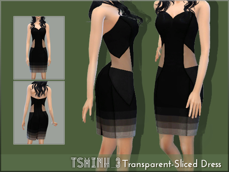Transperant-Sliced Dress BY BY tsminh_3