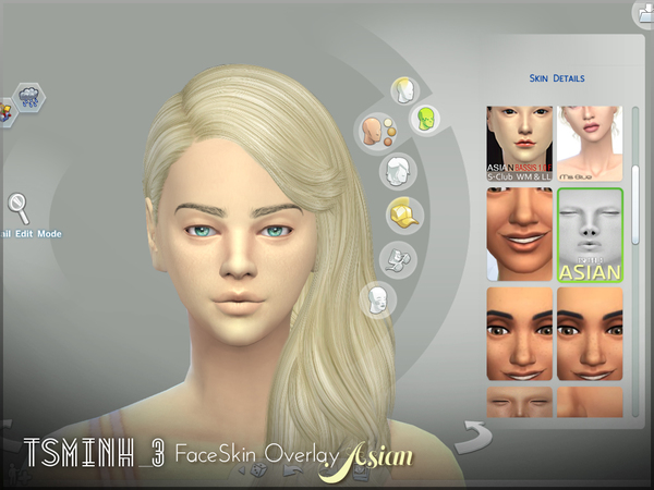 Tsminh_3 FaceSkin Overlay - Asian