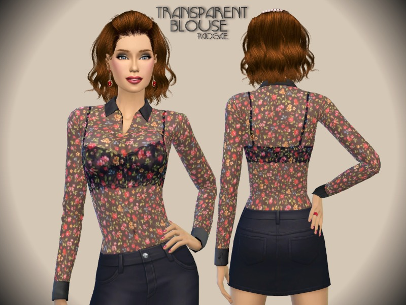 Transparent Blouse BY Paogae