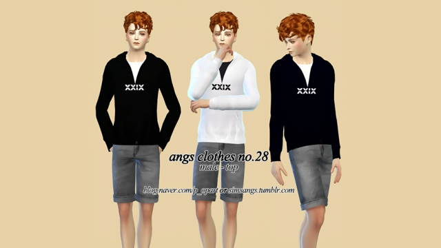 Clothes no.28_Male_Top by Angs