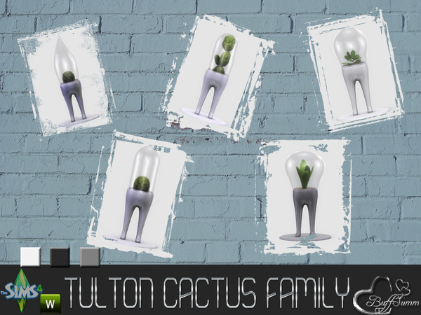 Tulton Cactus Family by BuffSumm