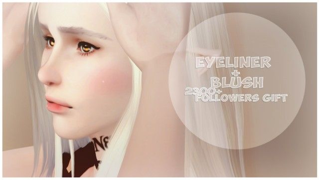 Eyeliner + Blush by TUDART