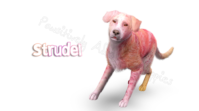 Strudel Dog by Calista