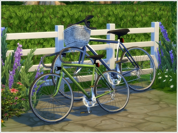 Set of Bicycles by Severinka