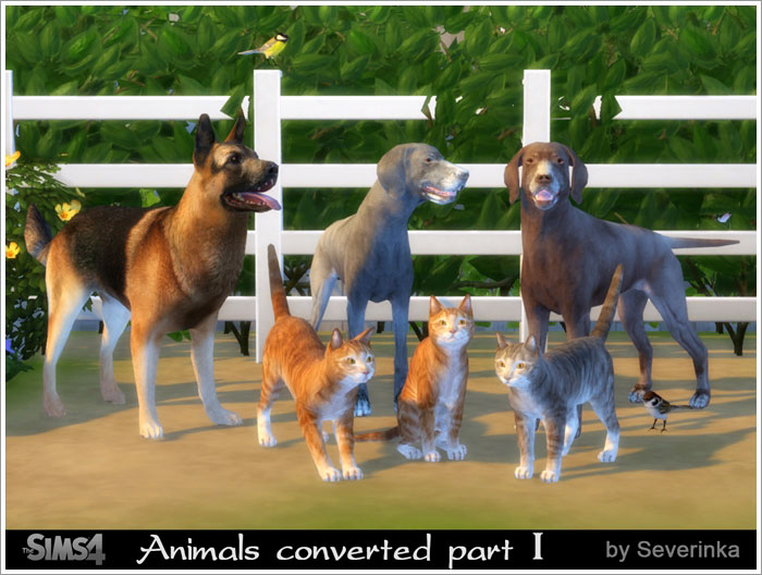 Animals converted part I by Severinka