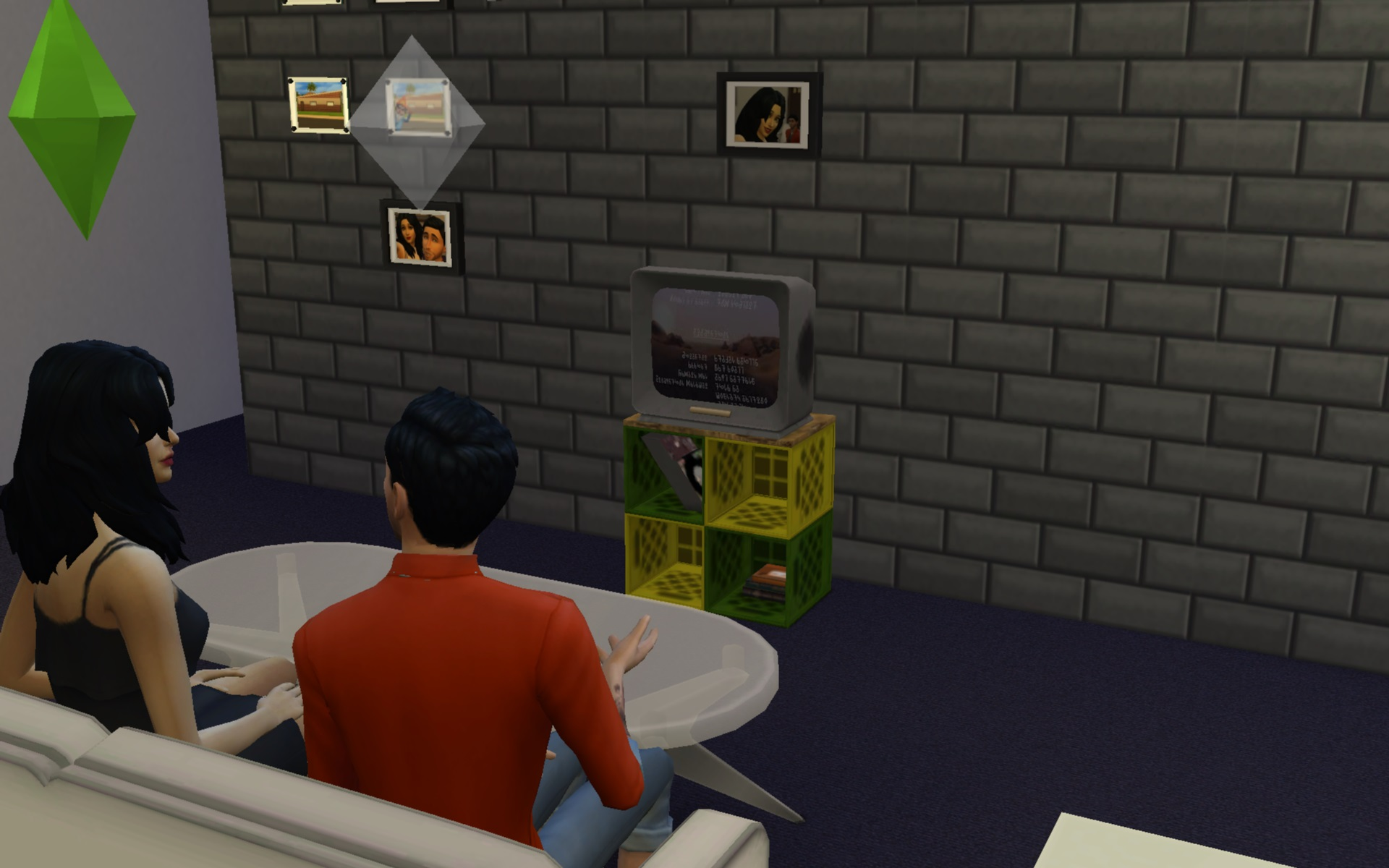Never Mind the Milk Crates, Heres the Telly ( ts3 conversion) by g1g2