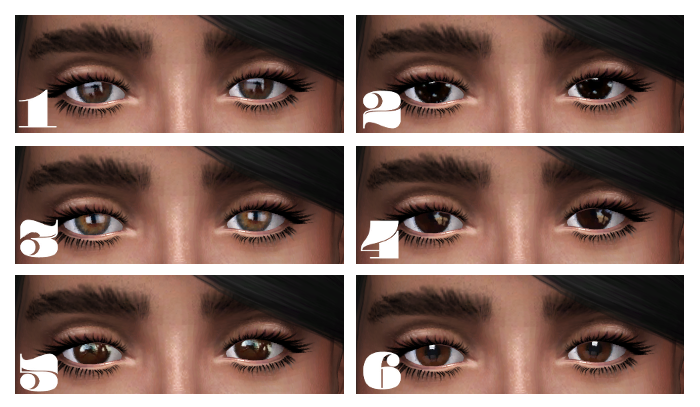 6 Shades of Brown Eyes by EyemythSims