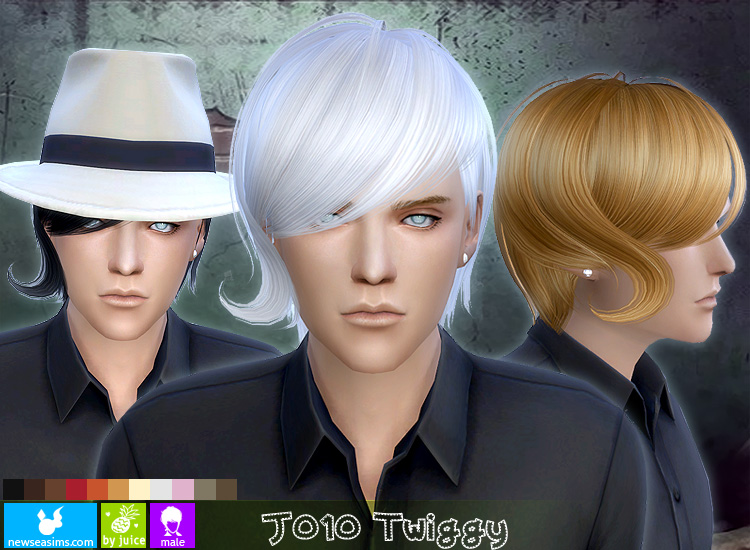 Twiggy Hair for Males by Newsea