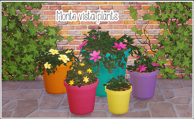 Monte Vista plants - Peasants Potted Plants by Lina Cherie