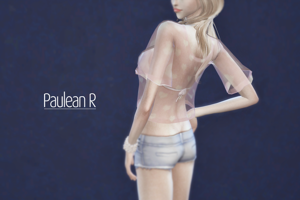 Paulean R  Accessories, Miscellaneous : Transparent shirt acc