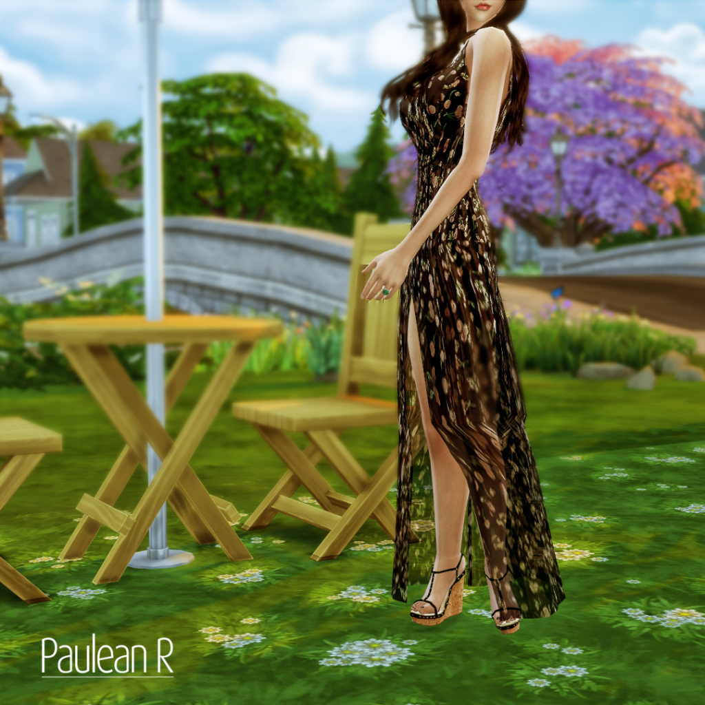 Chiffon Long Dress by Paulean R
