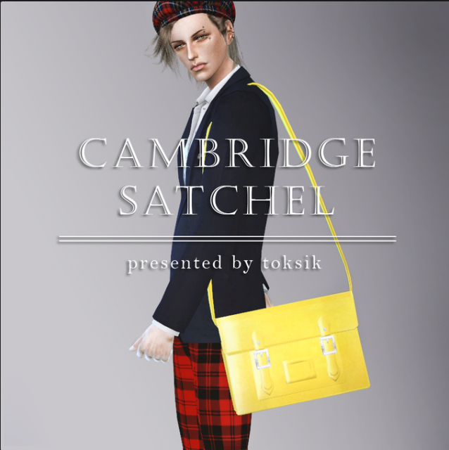 Cambridge Satchel by TokSik