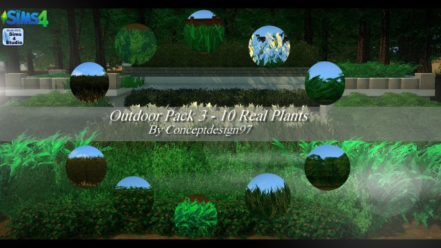 Outdoor Pack 3 - 10 Real Plants by ConceptDesign97