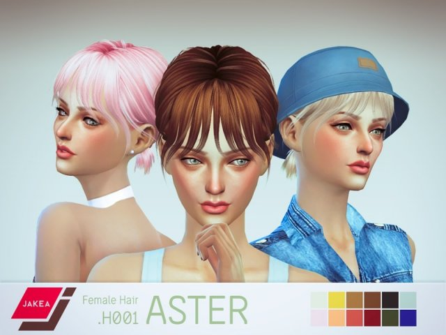 Female Hair H001 ASTER by JK-Sims