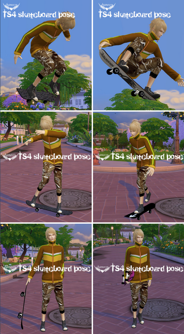 Skateboard and Poses by Haneco