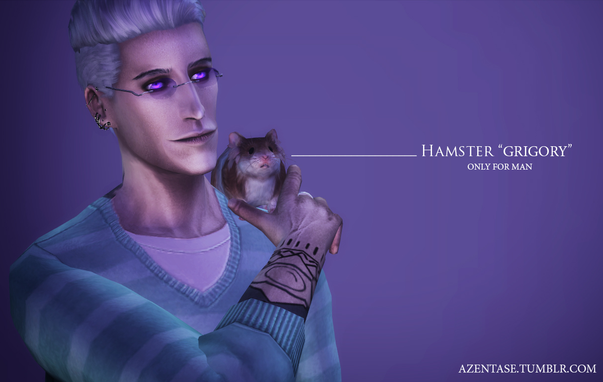 Accessory Hamster by Azentase