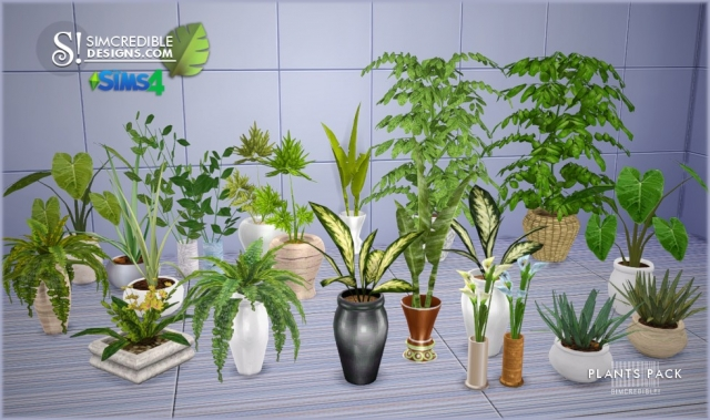 Plants by Simcredible Designs