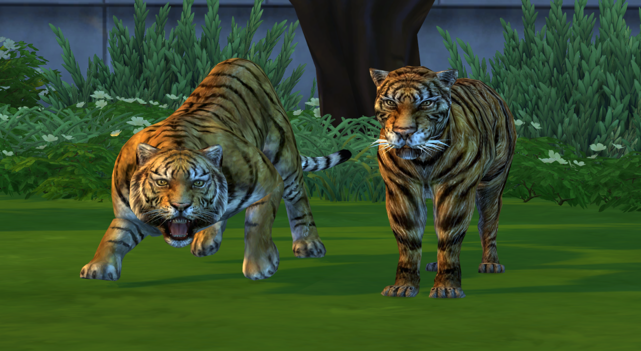Daislia-Two Tigers от noiranddarksims