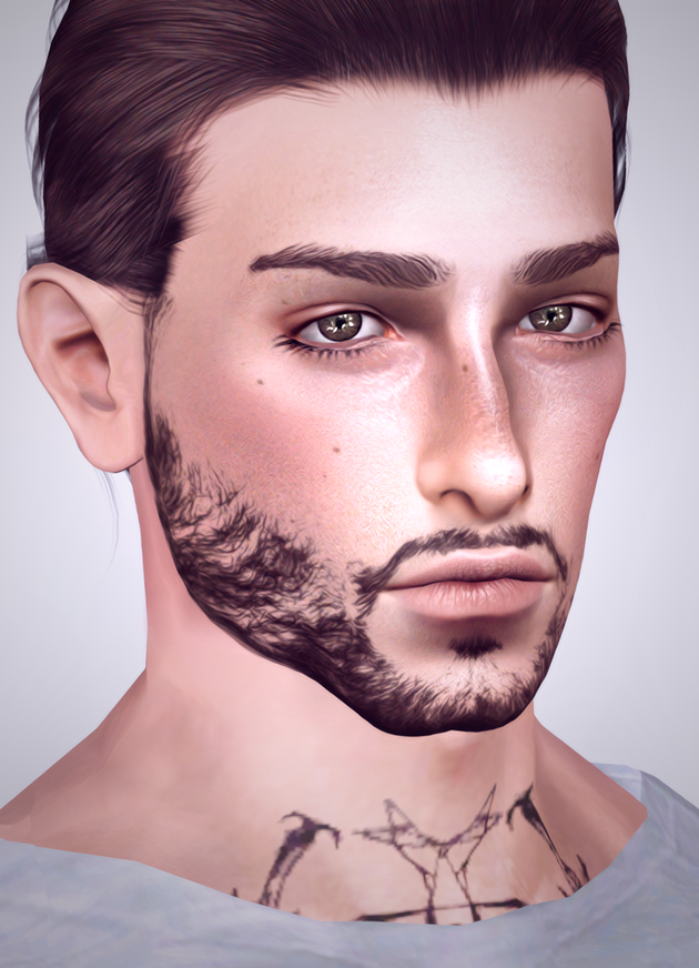 Beard N1 by andromedasims