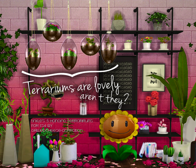 Tinkle's Hanging Terrariums by GrilledCheeseAspiration