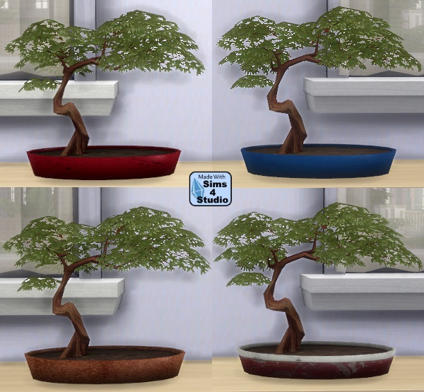 Bonsai Tree by OM