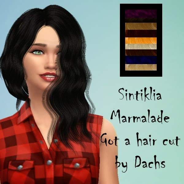 Sintinklia marmalade got a hair cut by Dachs