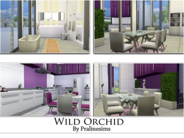 Wild Orchid by Pralinesims