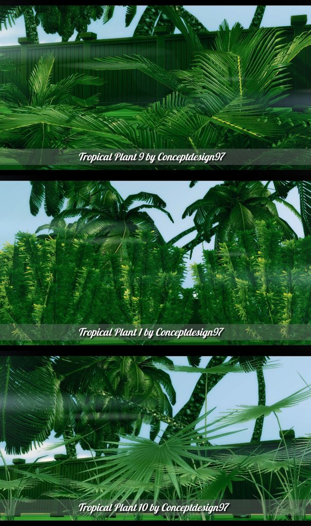 Tropicana Outdoor Pack - 10 Tropical Plants & 5 Palm Trees by ConceptDesign97