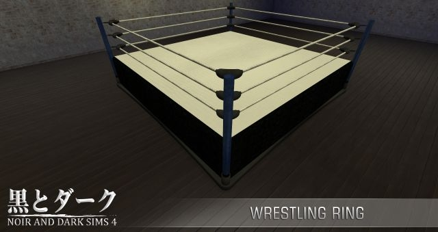 Boxing Ring by Noiranddarksims