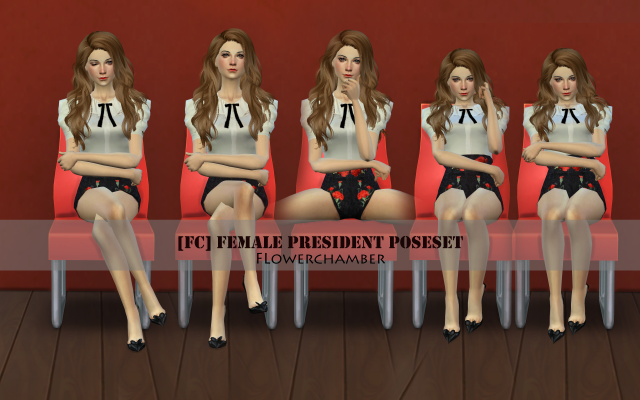Female President Pose set by flowerchamber