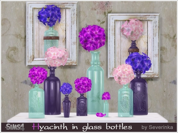 Hyacinth in glass bottles by Severinka