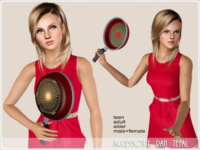 Accessory pan tefal by Severinka