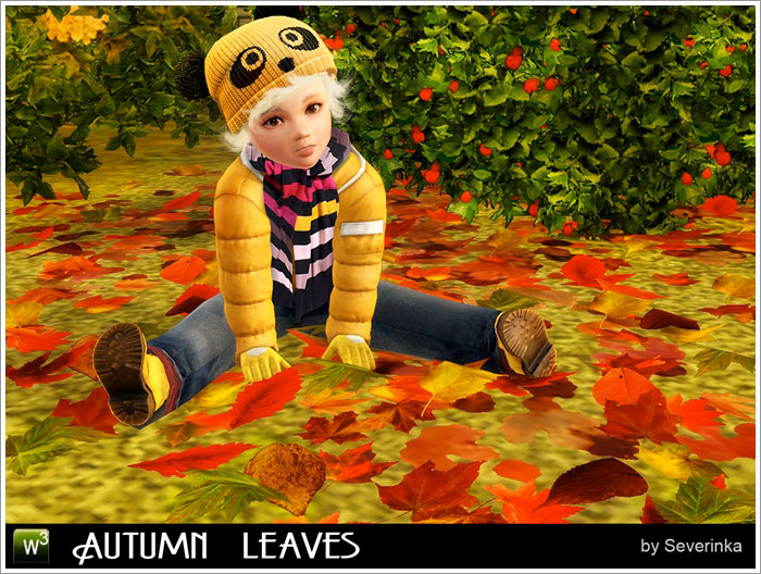 Autumn leaves by Severinka