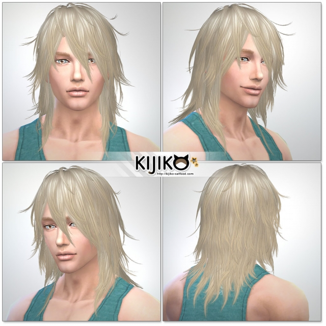 Shaggy Hair TS3 to TS4 conversion (for Male) by Kijiko