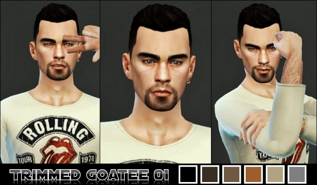 Trimmed Goatee 01 by Magentasims