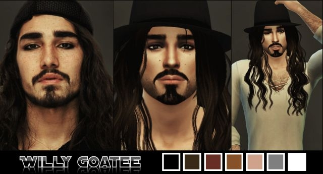 Willy Goatee by Magentasims