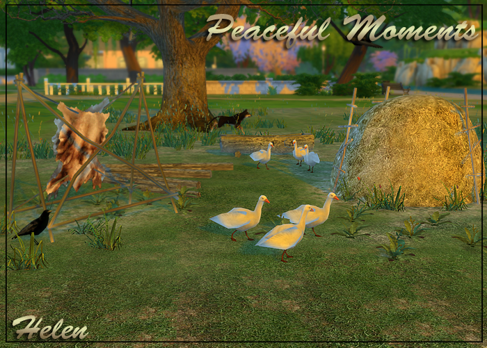 Peaceful Moments by Helen