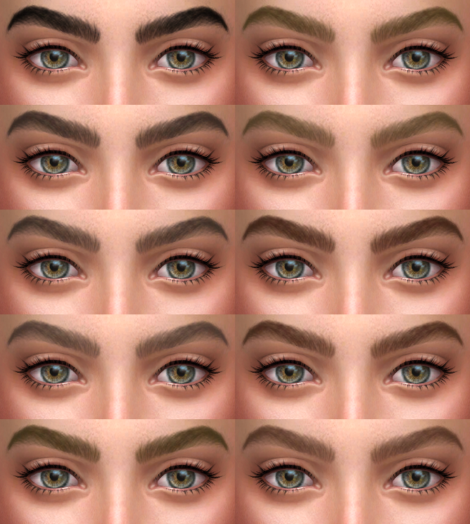 The Eyebrows by AlfSi