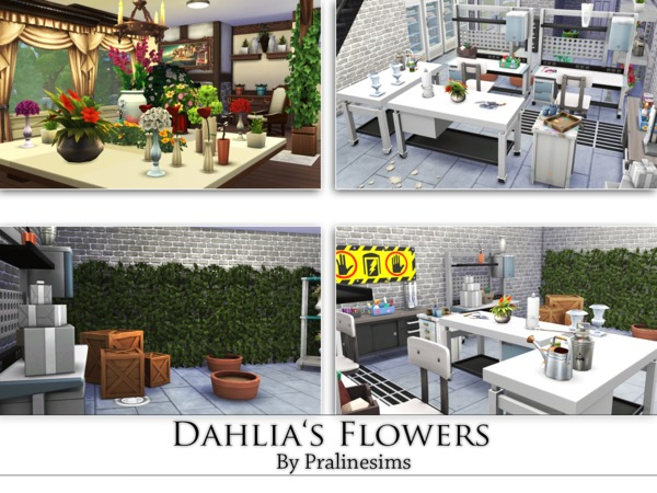 Dahlia's Flowers-Shop by Pralinesims
