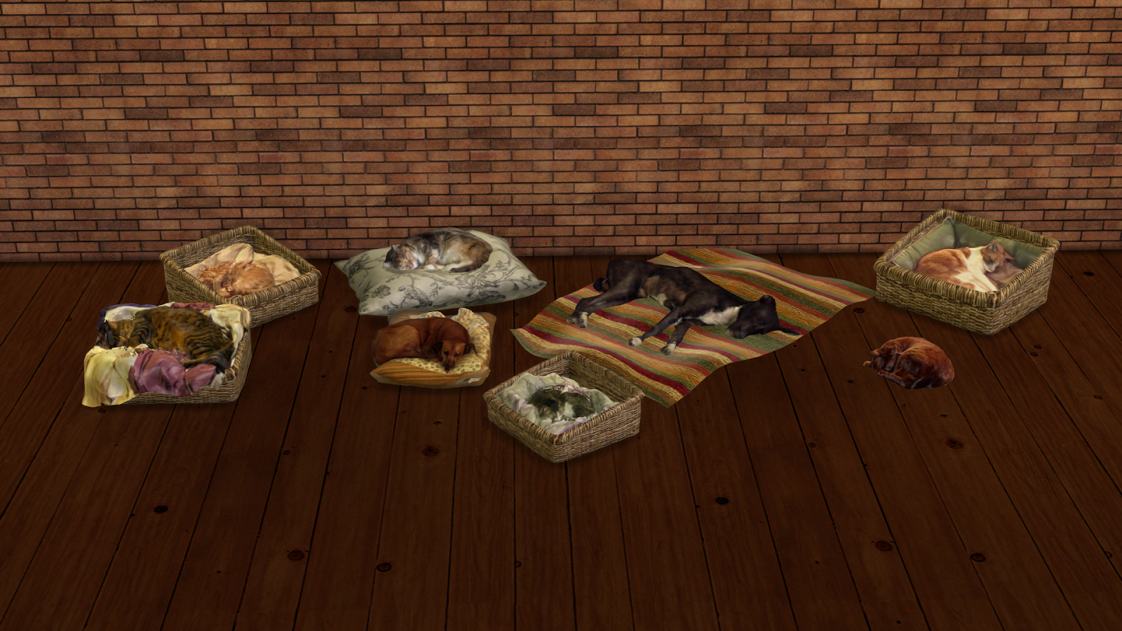 Sleeping Cats and Dogs Decor by Leo4Sims