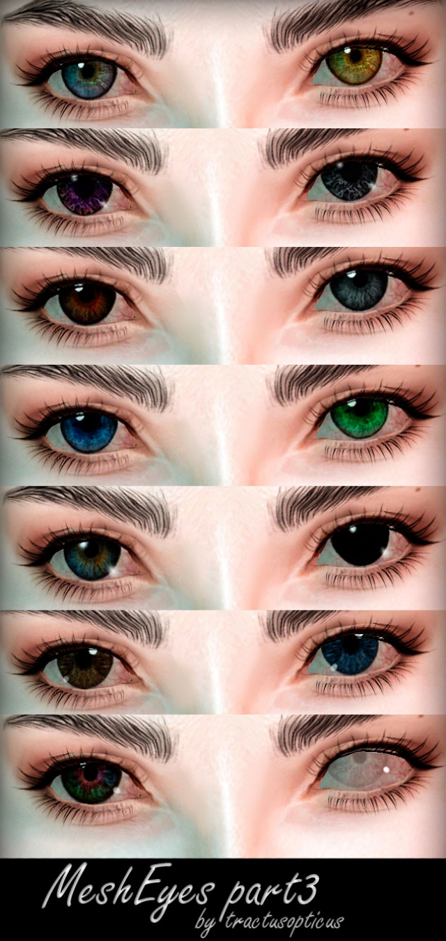 Mesh Eyes part 3 by tractusopticus