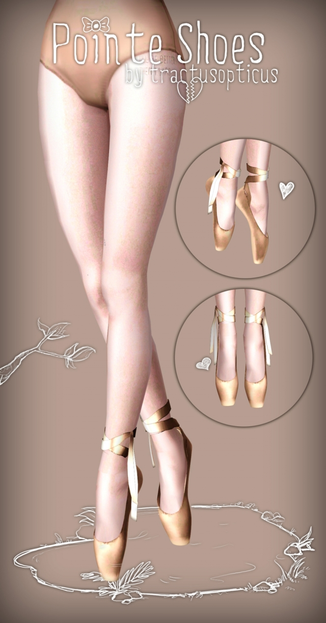Pointe shoes by tractusopticus