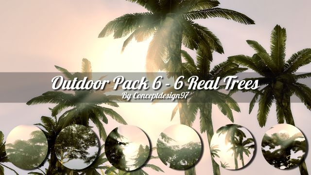 Outdoor Pack 6 - 6 Real Trees by ConceptDesign97