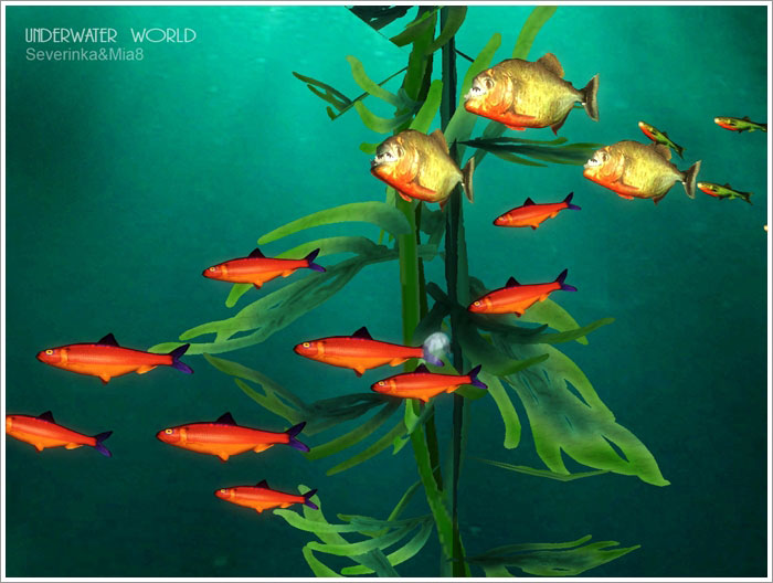 Underwater World by Severinka & Mia8