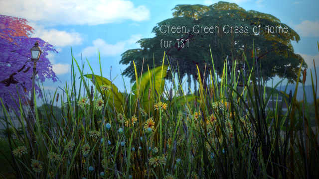Skyrim Field Grass by PixelsSquared