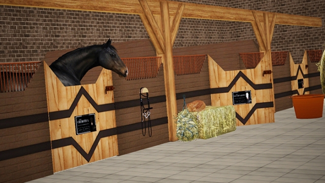 Custom Stall set 08 by Raymond Equestrian Centre