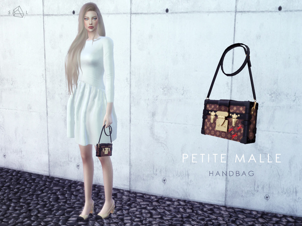 Petite Malle Bag by starlord