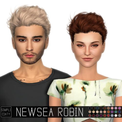 Newsea Robin Hair Conversion for Males and Females by Simpliciaty
