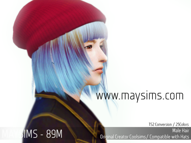 Hair 89 Male by MaySims