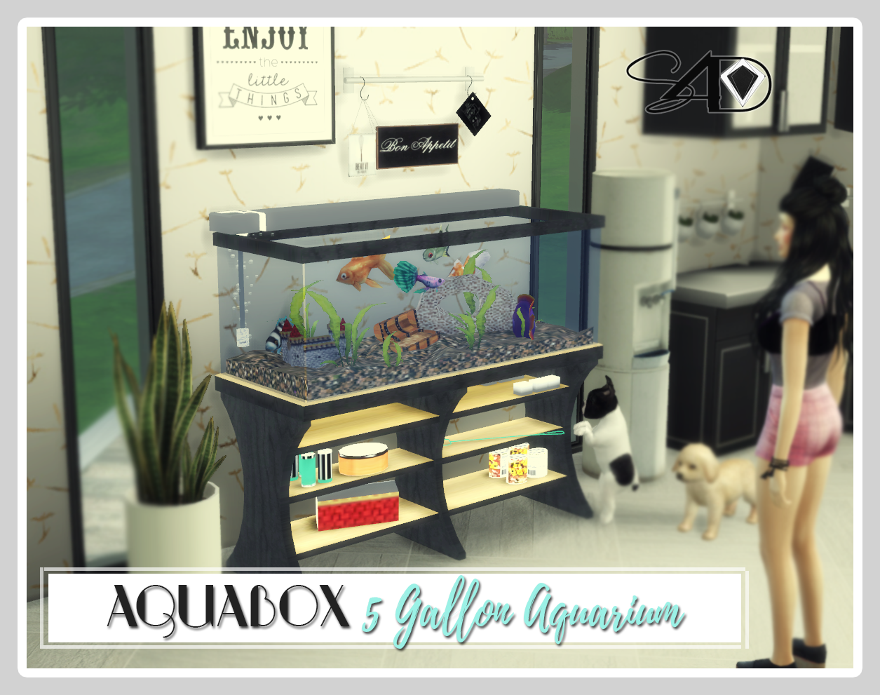 2T4 CONVERSION OF AQUABOX 5 GALLON AQUARIUM AT DAER0N  SIMS 4 DESIGNS